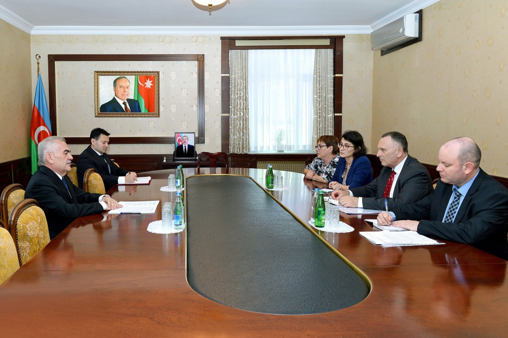 Chairman of Nakhchivan's Supreme Assembly meets with Israeli ambassador