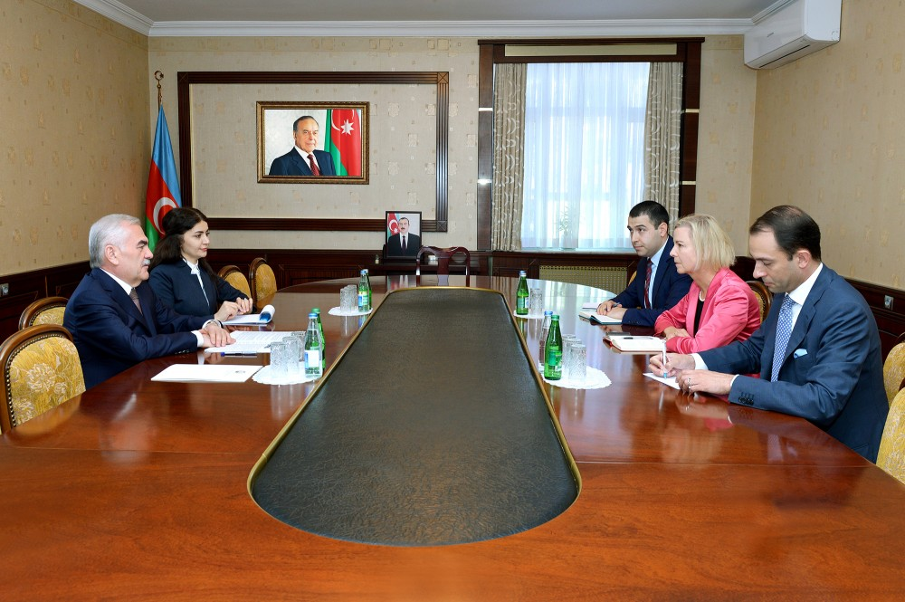 Chairman of Nakhchivan Supreme Assembly meets with Swedish ambassador to Azerbaijan