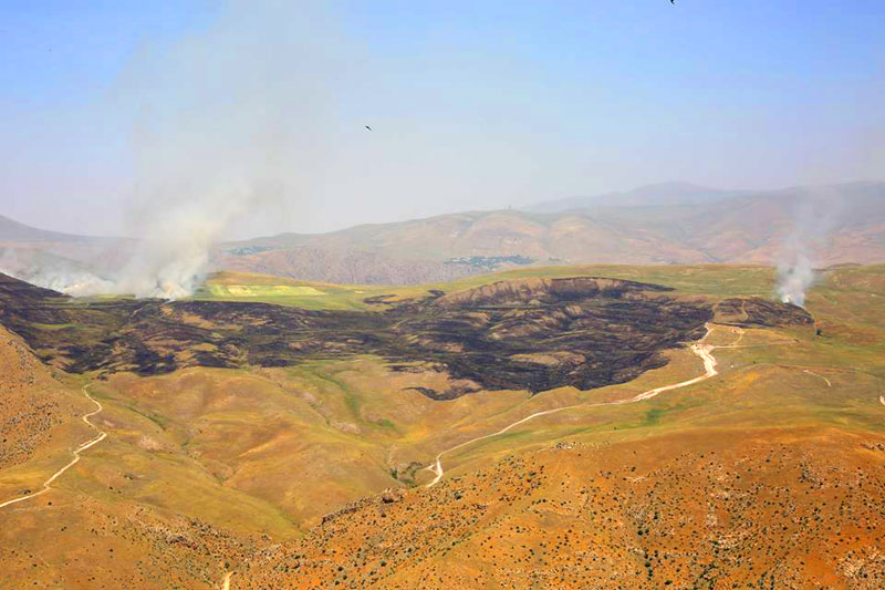Armenians burned their own grain fields on the border with Nakhchivan - VİDEO